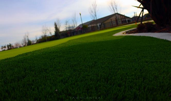 park mini golf